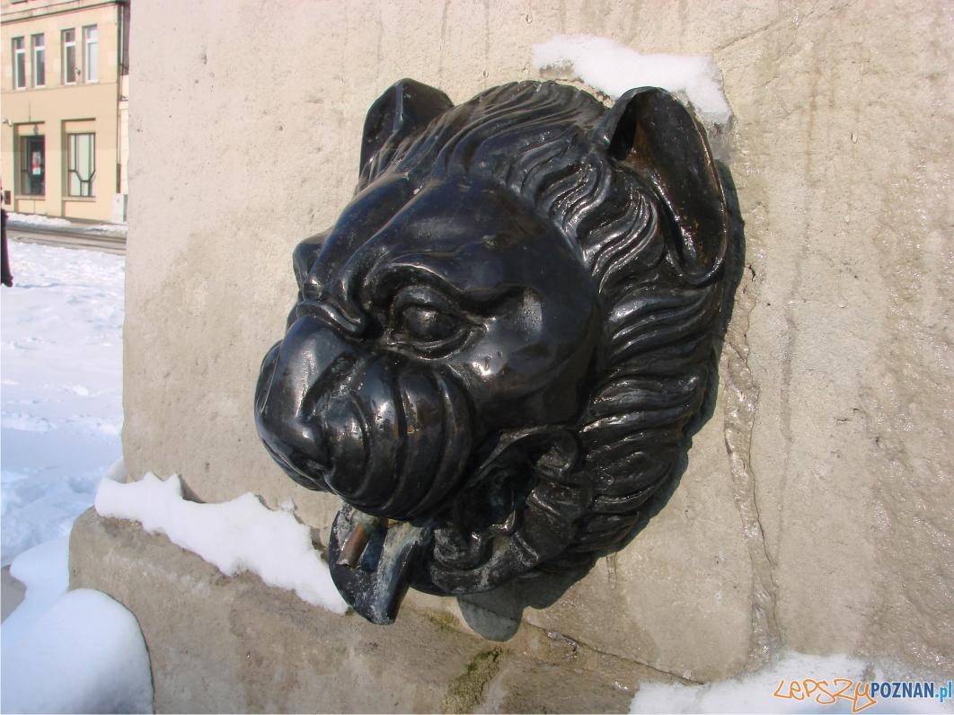 Z głowy lwa ciekła woda do kamiennego zbiornika  Foto: