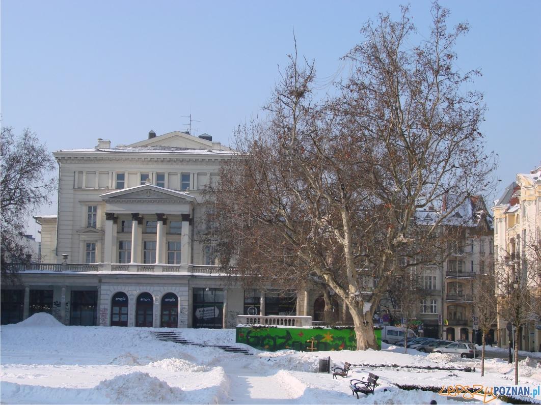 Arkadię wybudowano w latach 1802-1804  Foto: