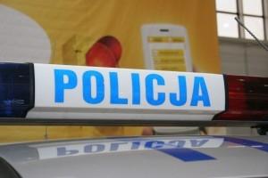Motor Show 2010 - Policja