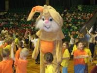 posir zajaczek