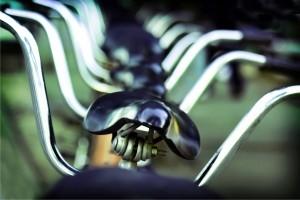 rowery Foto: sxc