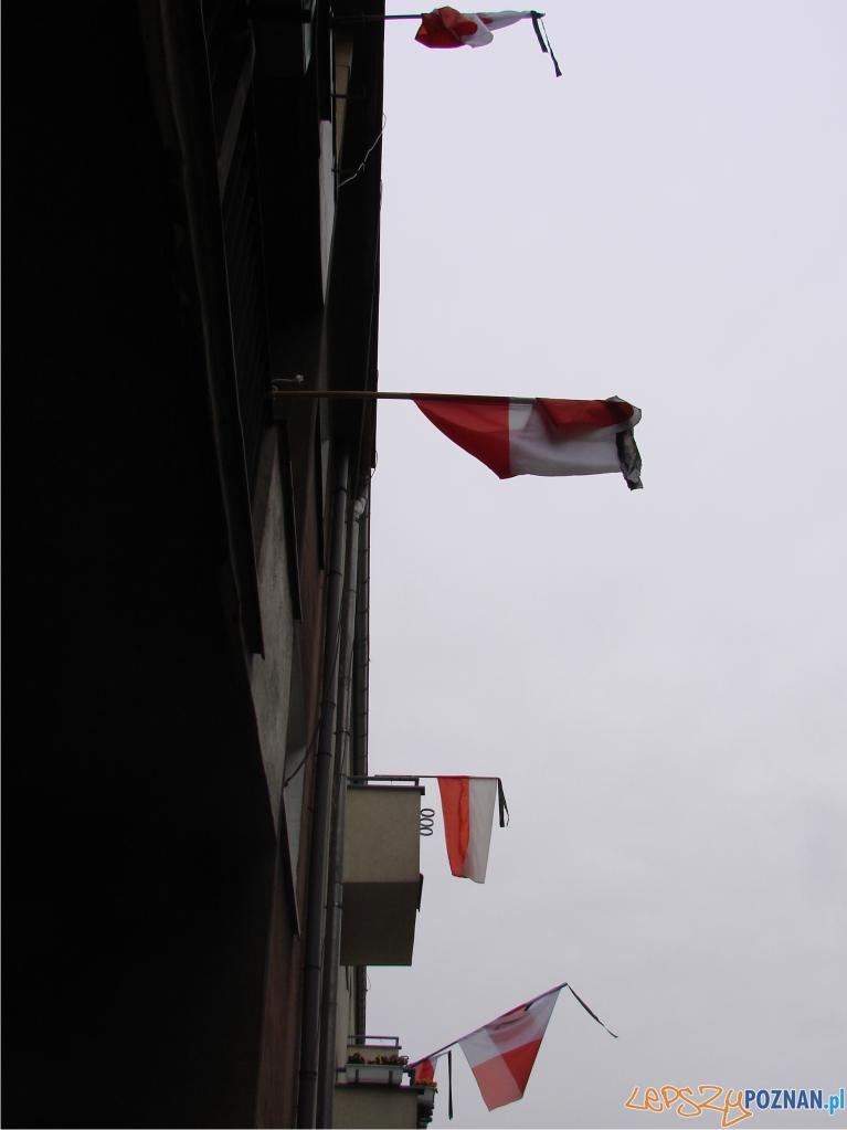 zaloba w Poznaniu flagi  Foto: