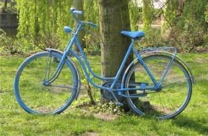 niebieski rower Foto: sxc