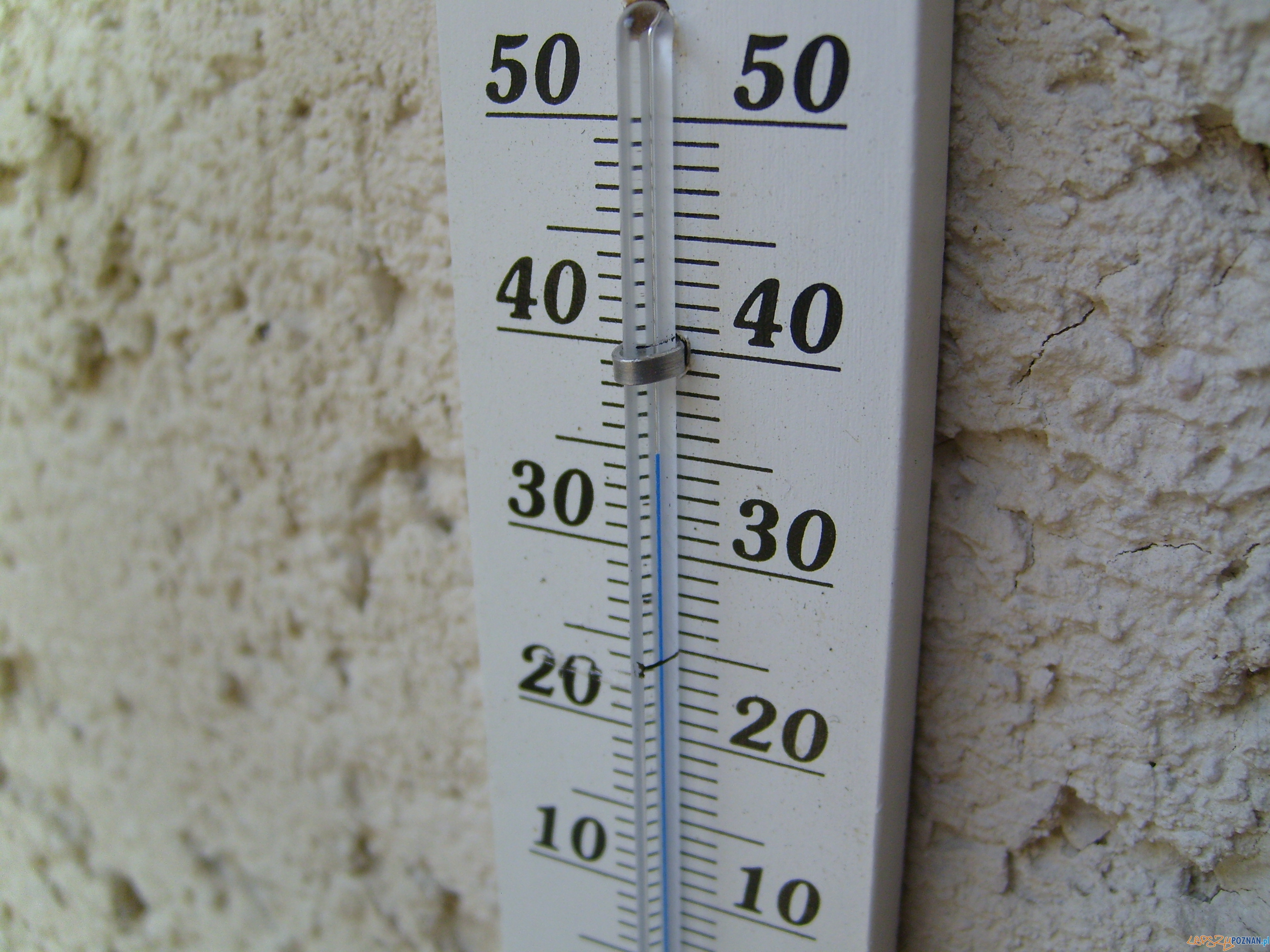 termometr  Foto: sxc.hu