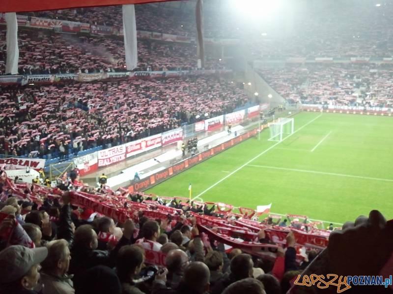 Bułgarska biało-czerwona  Foto: lepszyPOZNAN.pl / gsm