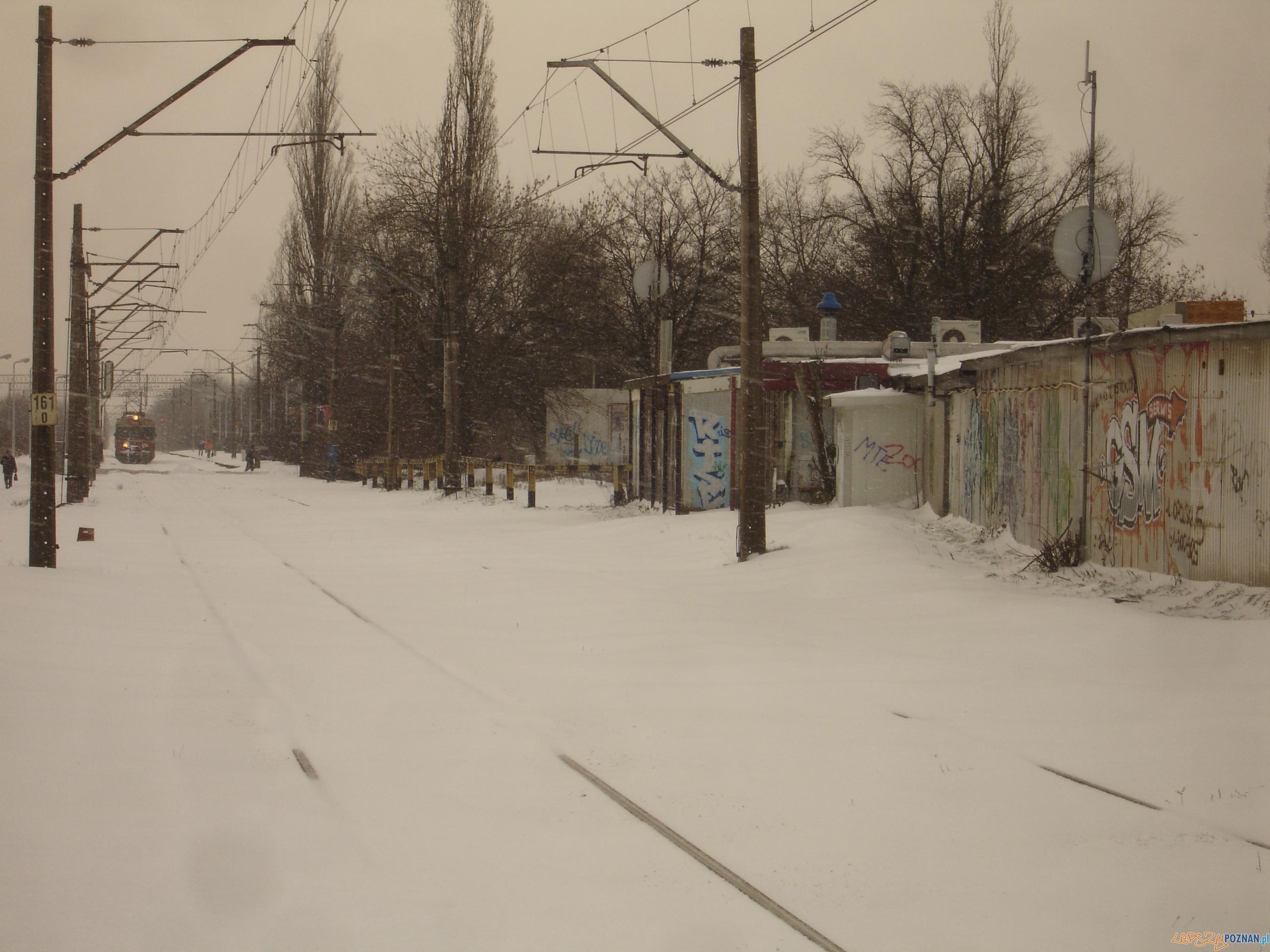 Zasypane tory kolejowe  Foto: Maciej Koterba