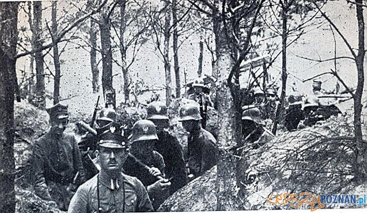 Powstanie_wielkopolskie_1918-1919_powstańcy w okopach
