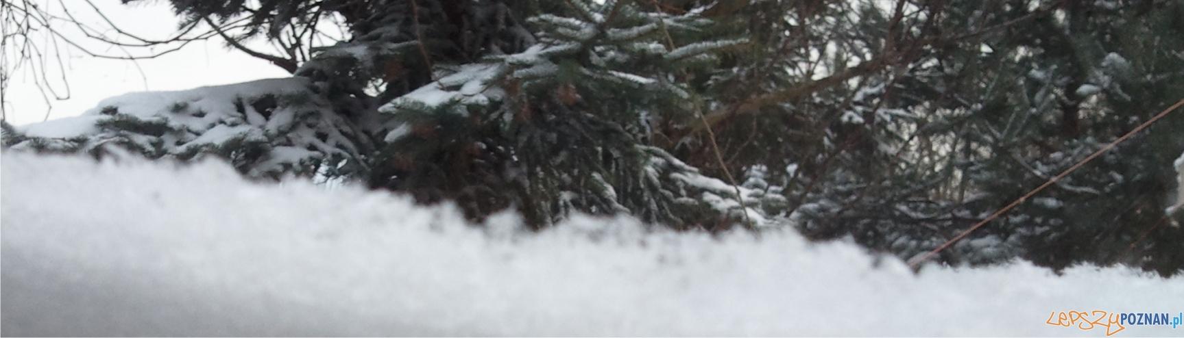 panorama zima  Foto: lepszyPOZNAN.pl