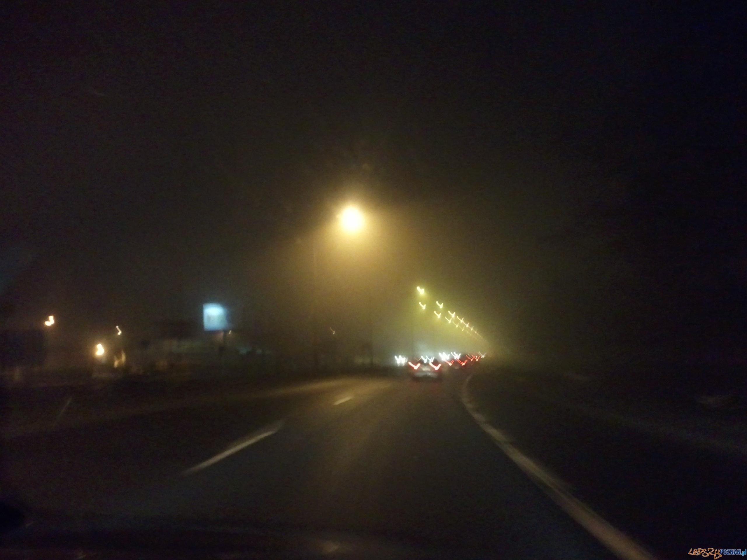 Mgła na trasie z Poznania do Kórnika  Foto: lepszyPOZNAN