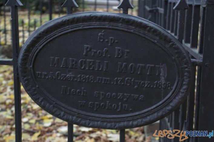 Marceli Motty Tablica na Cmentarzu Zasłużonch Wielkopolan