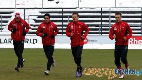 Peszko w barwach FC Köln Foto: FC Köln