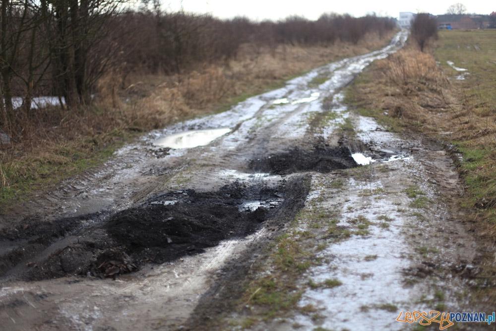 Gruz na polnej drodze  Foto: Straż Miejska w Poznaniu