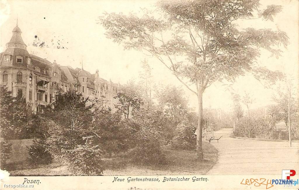 Ogród Botaniczny dziś park Wilsona w Poznaniu - lata 1900-1910 Foto: fotopolska.eu