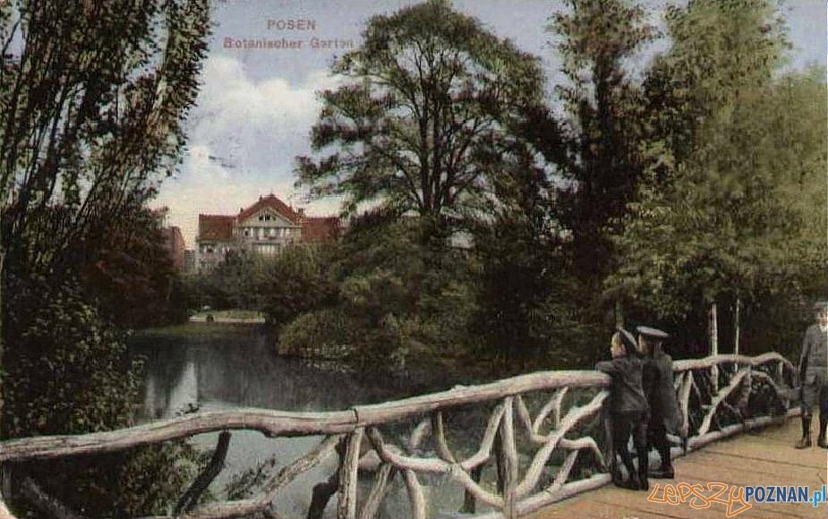 Ogród Botaniczny w roku 1915 (dzis Park Wilsona) Foto: fotopolska.eu