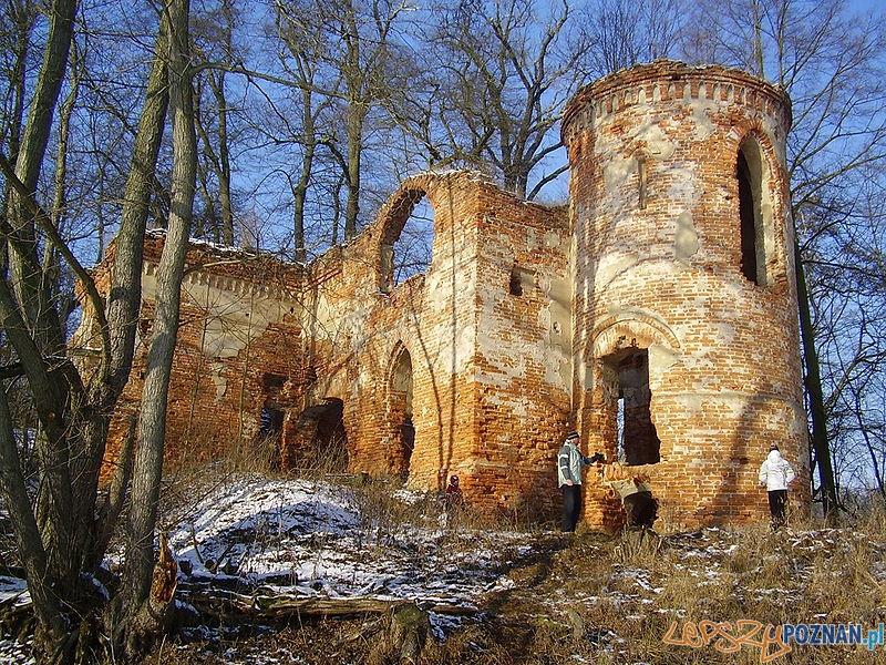 Zamek Klaudyny Potockiej na Jeziorze Góreckim Foto: wikipedia