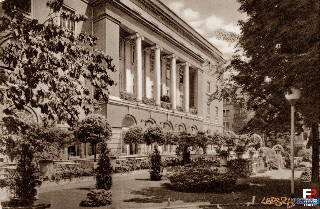 Park Wilsona od strony Głogowskiej Foto: fotopolska.eu