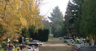 Cmentarz Junikowski