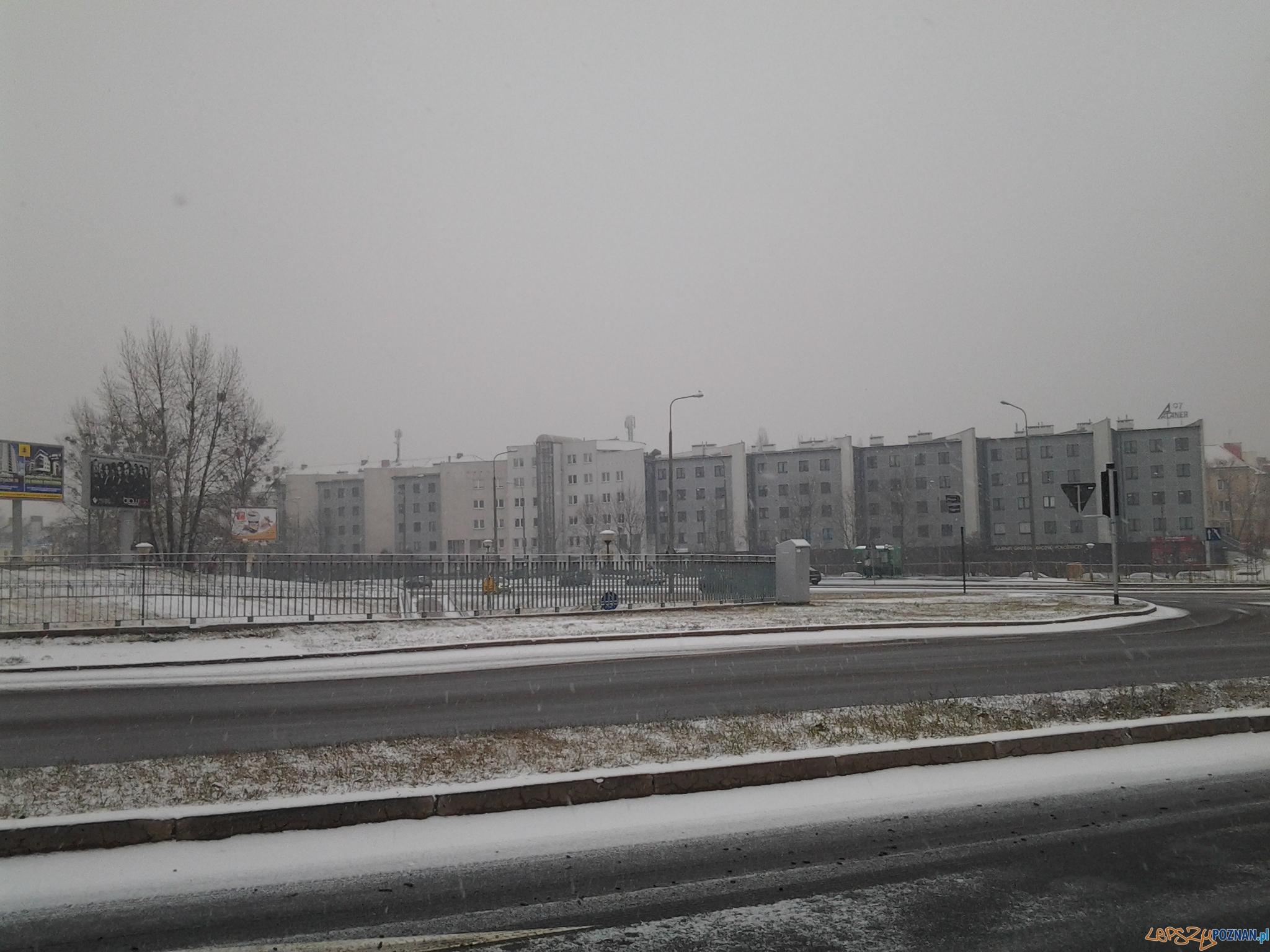Winogrady po porannych opadach śniegu (grudzień 2011)  Foto: lepszyPOZNAN.pl / gsm