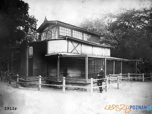 ZOO w Poznaniu 1912