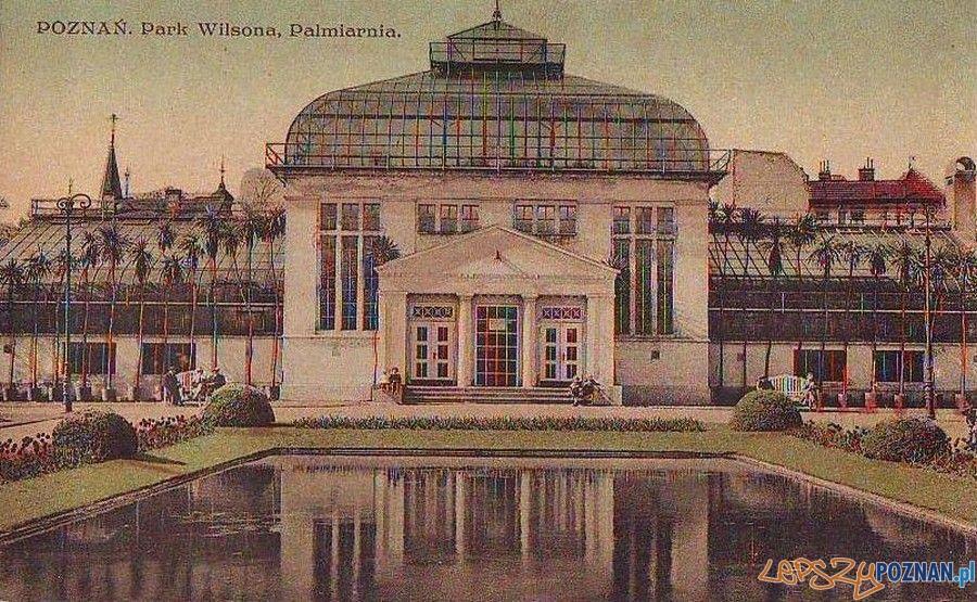 Palmiarnia rok 1915 Foto: fotopolska.eu
