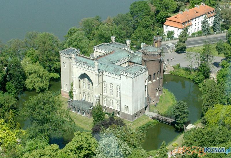 Zamek w Kórniku Foto: wikipedia