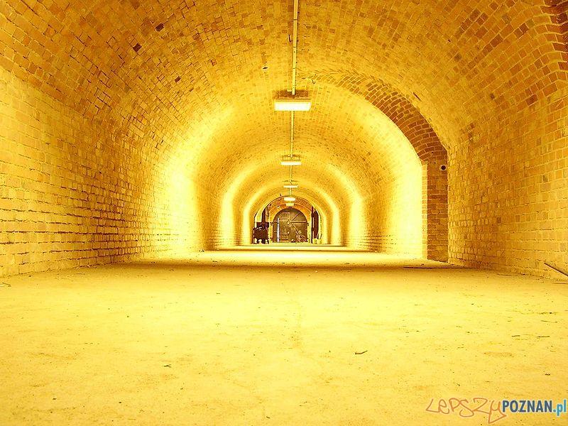 Wnętrze Fortu 2a Foto: wikipedia
