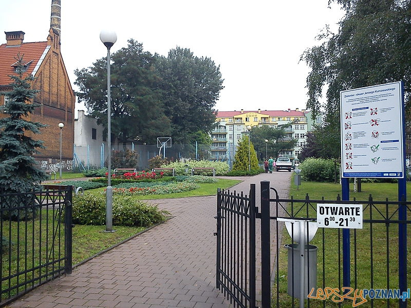 Skwer Kurczewskiego od strony ul. Bergera Foto: wikipedia.pl