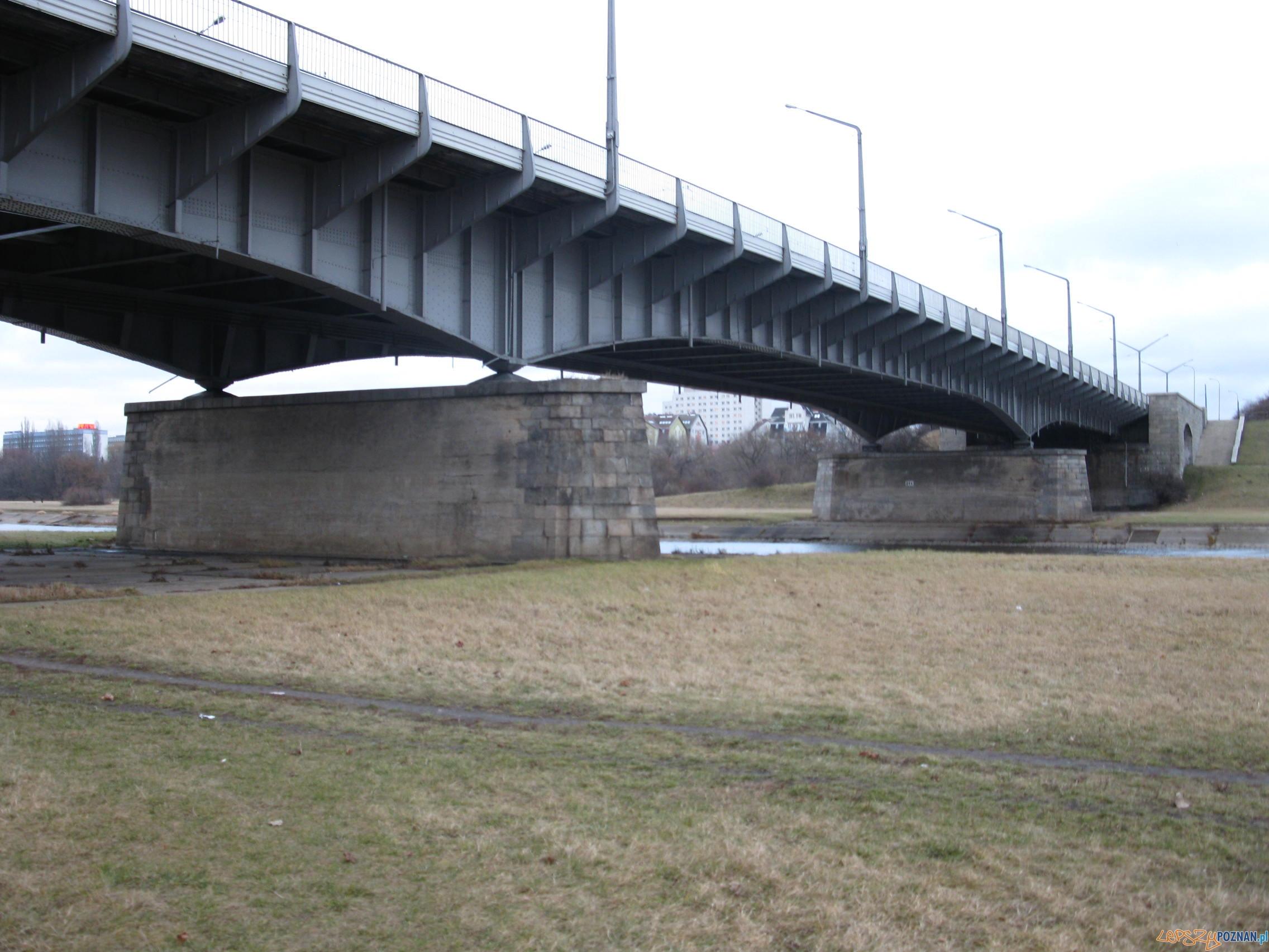 Most_Królowej_Jadwigi  Foto: wikimedia.org