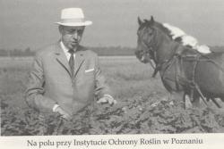 Profesor Węgorek na polu przy Instytucie Ochrony Roślin Foto: http://rme.cbr.net.pl
