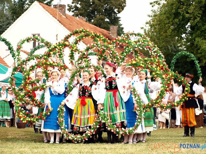 Zespół Pieśni i Tańca Lusowiacy  Foto: facebook