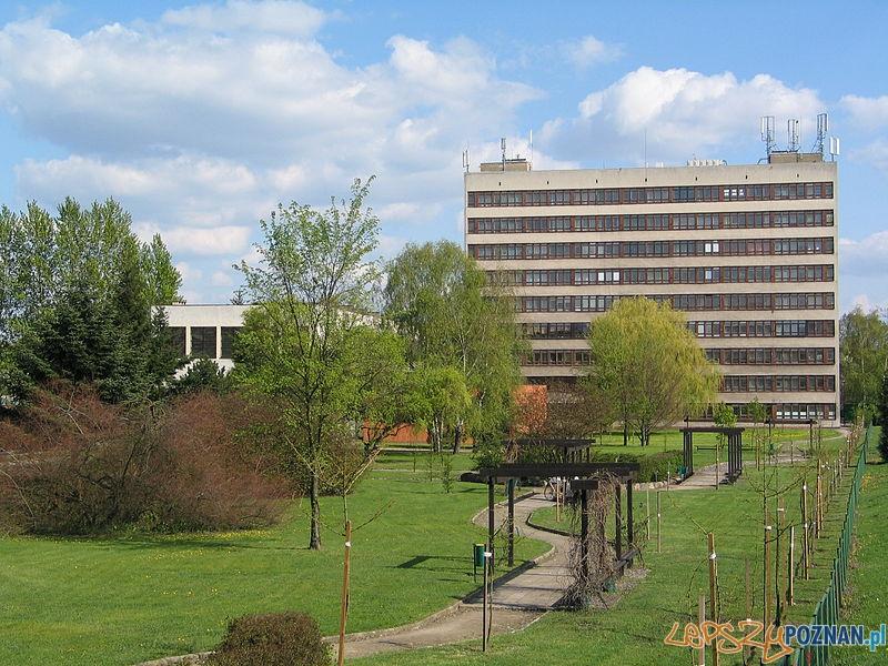 Budynki Uniwersytetu Przyrodniczego Foto: wikipedia.pl