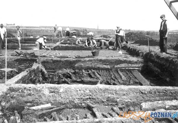 Prace archeologiczne w Biskupinie Foto: http://www.muzarp.poznan.pl