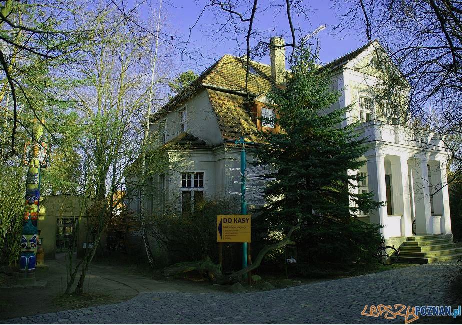 Muzeum Fidlera w Puszczykowie Foto: wikipedia