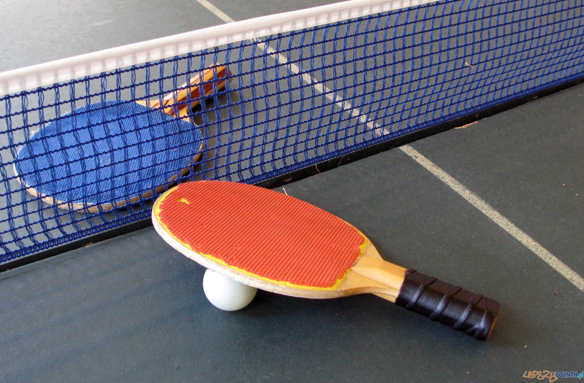 tenis stołowy  Foto: sxc