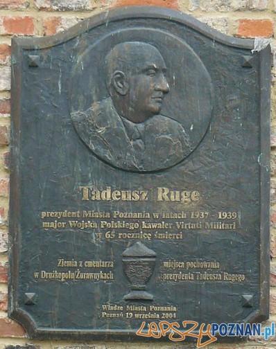 Tablica pamiątkowa Tadeusza Ruge Foto: wikipedia.pl