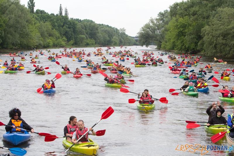 Kajakowa masa krytyczna - spływ Wartą z Puszczykówka do Mostu Rocha  Foto: lepszyPOZNAN.pl / Piotr Rychter