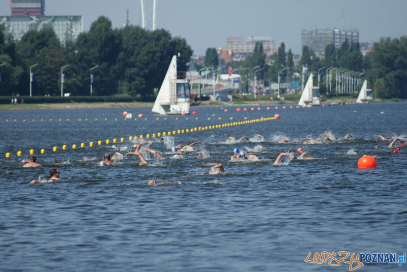Grand Prix Wielkopolski na Malcie (2012) Foto: GP w pływaniu długodystansowym/facebook