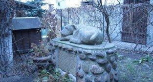 Pomnik psa  Foto: internet