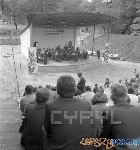 Amfiteatr w Parku Tysiąclecia 21.07.1978 Foto: Stanisław Wiktor/Cyryl