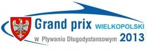 Grand Prix Wielkopolski w Pływaniu