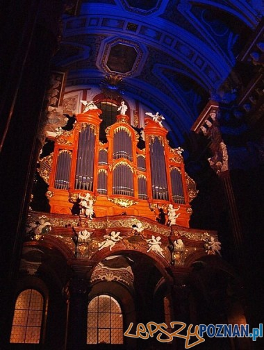 Organy w Farze