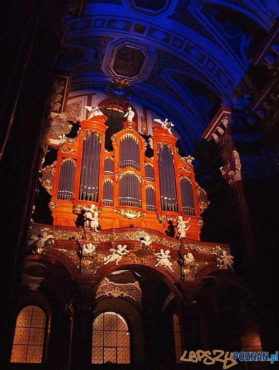 Organy w Farze  Foto: organy farne/facebook
