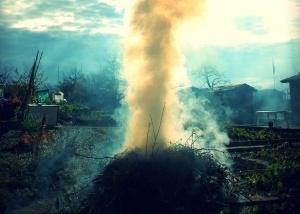 Palenie liści Foto: sxc