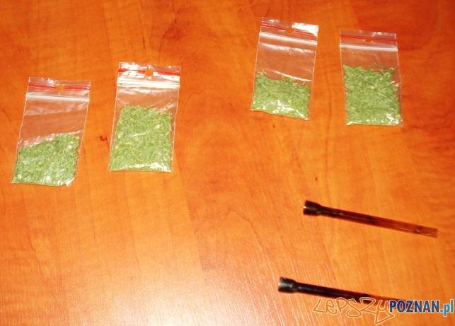 Policja zabezpieczyła woreczki z narkotykami Foto: Wielkopolska Policja