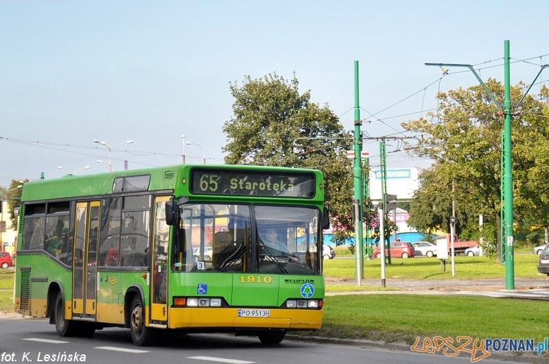 Neoplan linia-65  Foto: K.Lesińska MPK Poznań