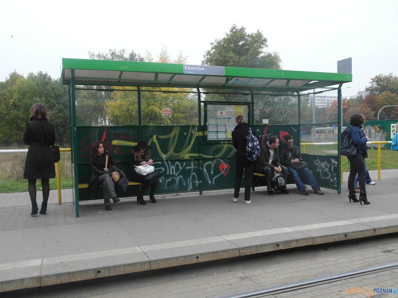 Zniszczony przystanek Orle Gniazdo  Foto: MPK Poznań