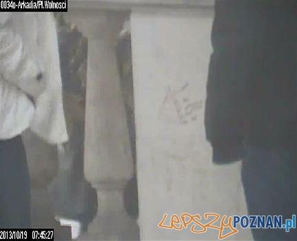 znaki wymalowane na elewacji tarasu arkadii  Foto: Straż Miejska