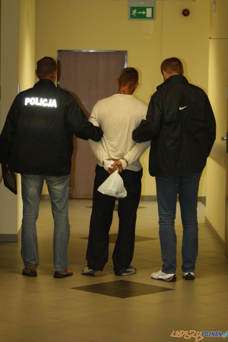 Policja zatrzymała podejrzanego  Foto: