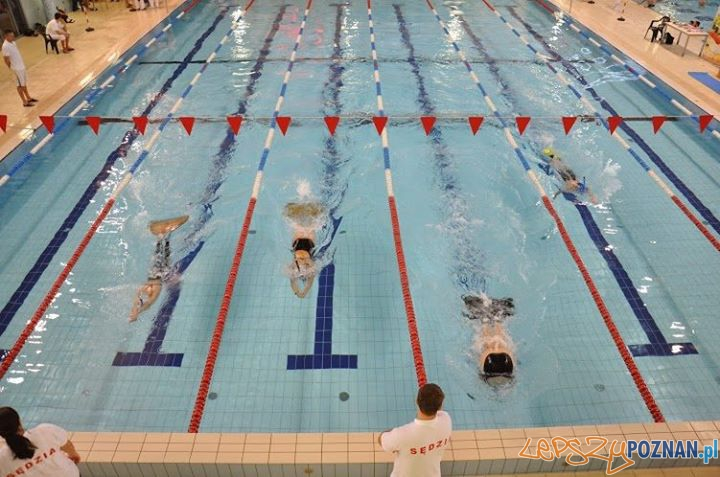 Maraton w Termach Foto: Szkoła Pływania Fregata