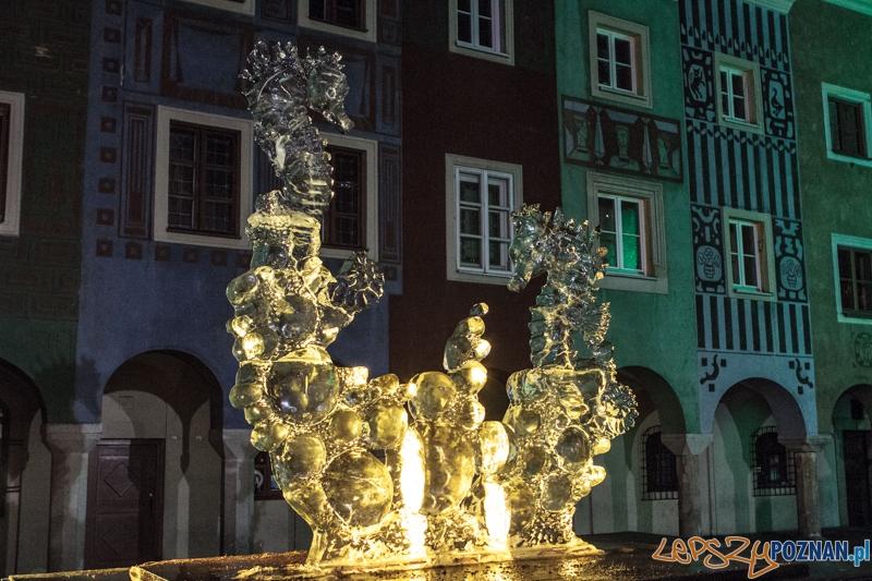 VIII Międzynarodowy Festiwal Rzeźb Lodowych - Poznań 15.12.2013 r.  Foto: LepszyPOZNAN.pl / Paweł Rychter